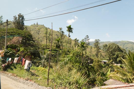 Onderweg naar Nuwara-Eliya-1850