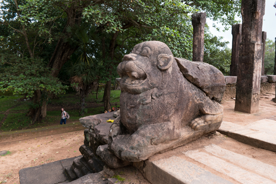 Polonnaruwa Ancient city-2970