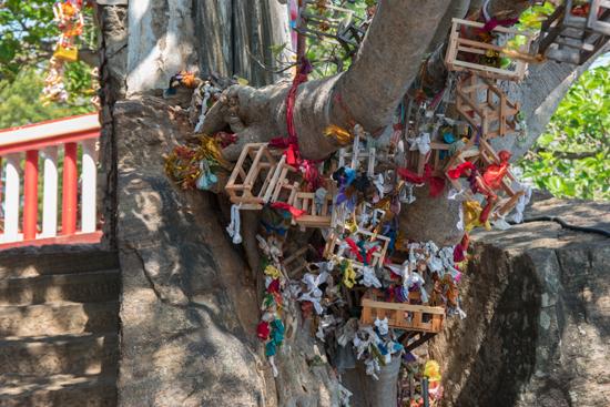 Trincomalee Koneswaram tempel-3960