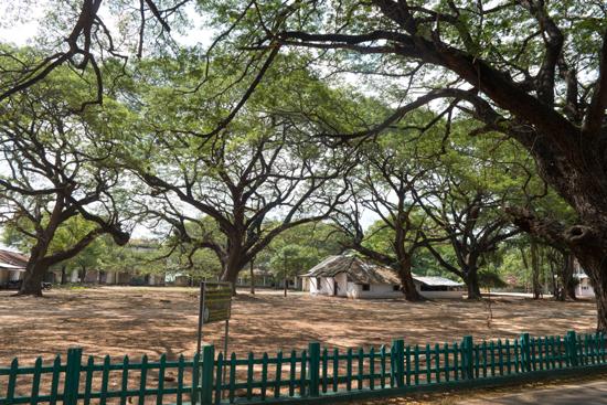 Trincomalee Koneswaram tempel-3970