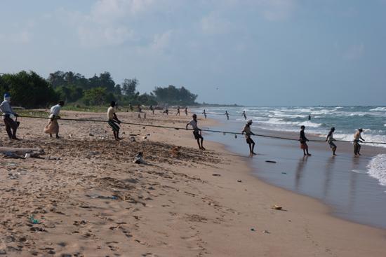 Trincomalee Vissers halen de vis binnen-4000