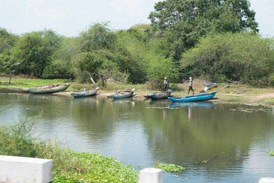 Onderweg naar Negombo-4070