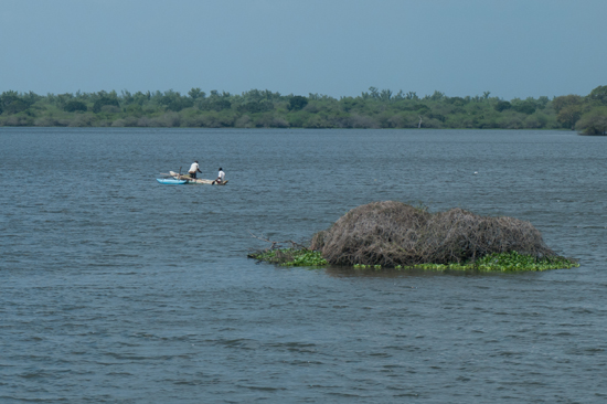 Onderweg naar Negombo-4090