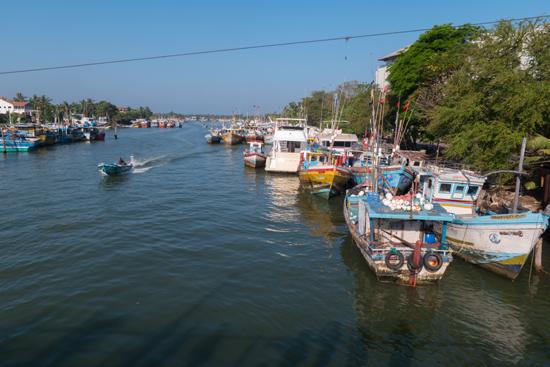 Negombo Vissershaven-4150