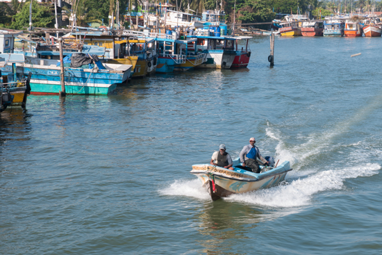 Negombo Vissershaven-4160