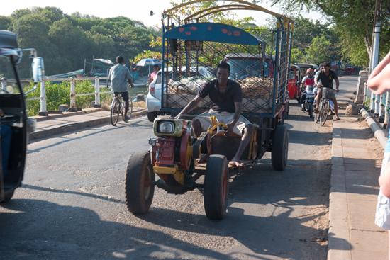 Negombo Vissershaven-4170