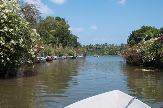 Negombo Boottocht -4260