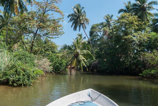 Negombo Boottocht -4270