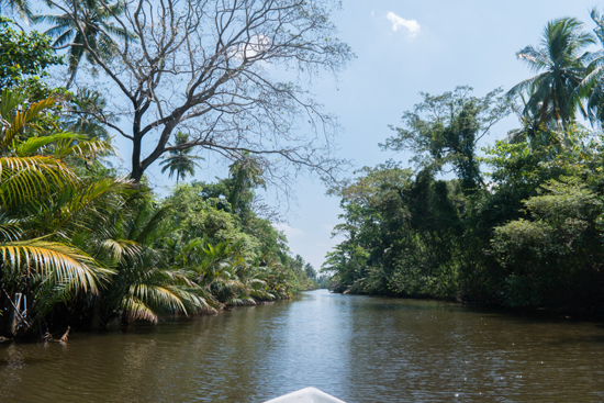 Negombo Boottocht -4320