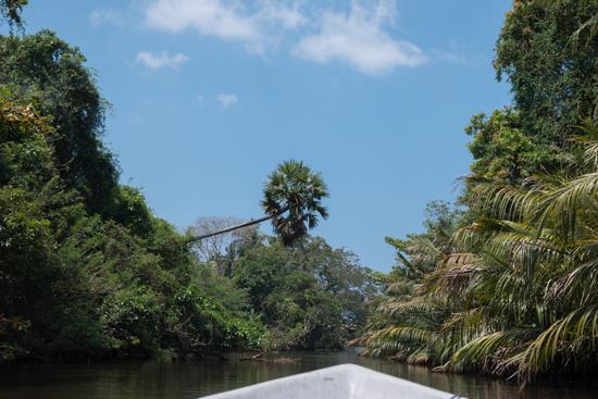 Negombo Boottocht -4360
