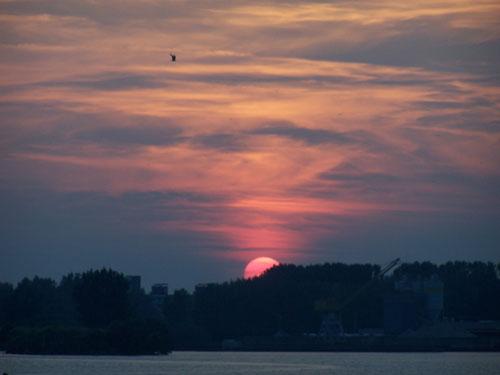 Sunsets   sunsets_100_1810.jpg